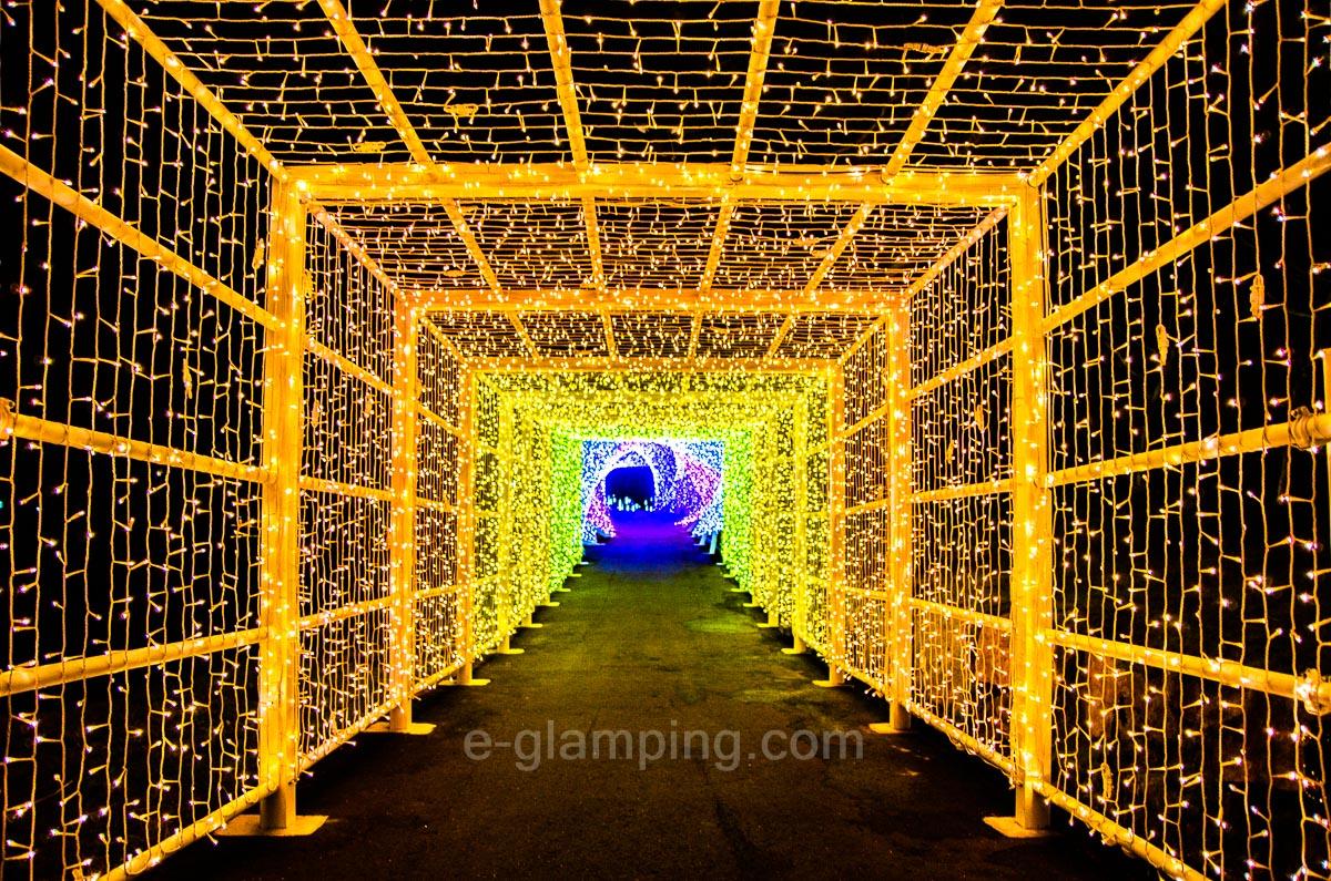冬グランピングの京都イルミネーションシナスタジアヒルズスパイラルライトトンネル内