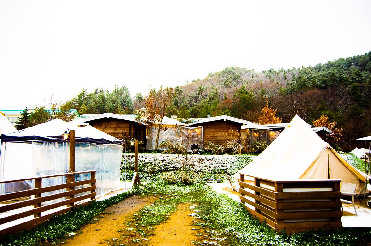 冬グランピンググラックスの朝雪