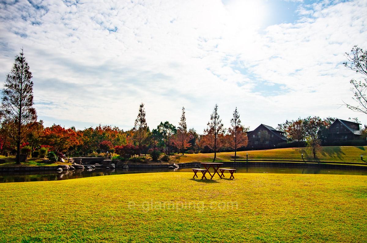 ホテル・ロッジ舞洲ログハウス前の芝生